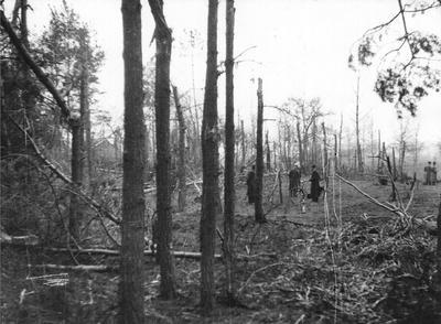 Op de avond van de 26e maart 1943 waren er hevige luchtgevechten boven Aalten. Op de Hollenberg kwam een zware bom terecht, waardoor in een bos van boerderij Pöppink veel schade werd aangericht. Uit het boek Aalten in Oorlogstijd van door J.G. ter Horst