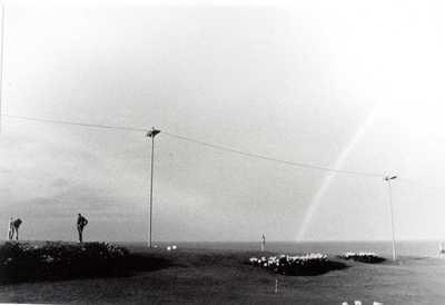 Zwart-wit foto. Golfterrein.