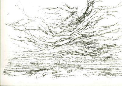 Lithografie van een rivierenlandschap; de voorgrond toont een golvende rivier; op de horizon de contouren van Tiel en daarboven een expressieve lucht.
