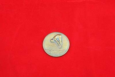Een bronskleurige medaille met een relief van een schoonspringer. Hij is in het midden van zijn sprong en heeft gestrekte benen. Hij is voorover gebogen en heeft zijn handen op zijn voeten. Onderaan is het water van het bad te zien. Op de achterzijde staat de inscriptie 'A.D.Z. / 2-4-'46 / 1e PR. / SCH. SPR. D.'.