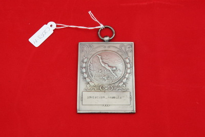 Een zilverkleurige rechthoekige medaille met een relief van een schoonspringer. Hij heeft zijn handen met gestrekte armen boven zijn hoofd en raakt bijna het water. In het bad zijn nog andere zwemmers te zien. Het relief is weergegeven in een cirkel met daarom een florale krans. Onderaan is een cartouche met de inscriptie 'ZWEMCLUB HAARLEM '. Op de achterzijde staat de inscriptie 'SCHOONSPRINGEN / DAMES / 1e PR. / 2-7-'44'.