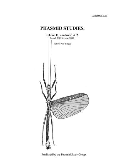 Phasmid studies.