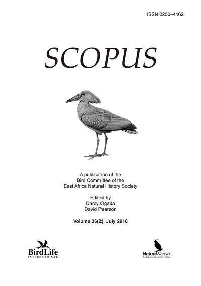 Scopus.