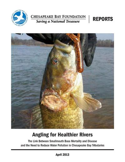 Angling for healthier rivers : the link between smallmouth bass mortality and disease and the need to reduce water pollution in Chesapeake Bay tributaries /