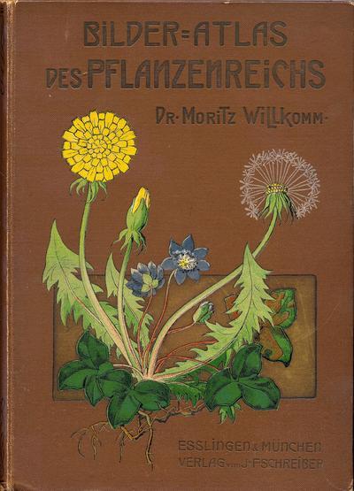 Bilder-Atlas des Pflanzenreichs nach dem natürlichen System.