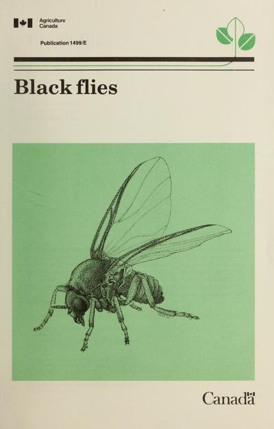 Black flies /