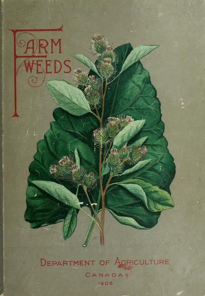Farm weeds of Canada / by George H. Clark and James Fletcher ; with illustrations by Norman Criddle.