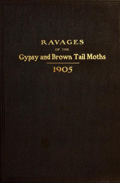 Illustrations of the ravages of the gypsy and brown tail moths.