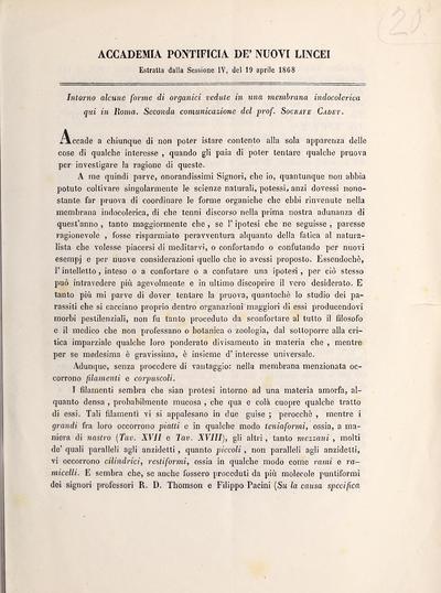 Intorno alcune forme di organici vedute in una membrana indocolerica qui in Roma : seconde communicazione /