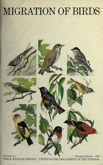 Migration of birds. by Frederick C. Linclon ; revised by Steven R. Peterson ; associate editor Peter A. Anastasi ; illustrated by Bob Hines.