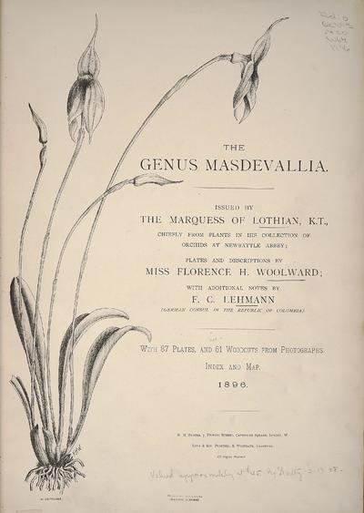 The genus Masdevallia /issued by the Marquess of Lothian, chiefly from plants in his collection of orchids at Newbattle Abbey ; plates and descriptions by Florence H. Woolward ; with additional notes by F.C. Lehmann.