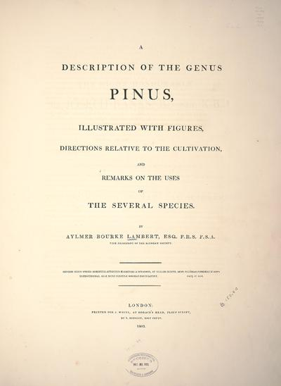 A description of the genus Pinus :illustrated with figures, directions relative to the cultivation, and remarks on the uses of the several species /by Aylmer Bourke Lambert.