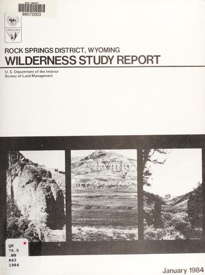 Wilderness study report