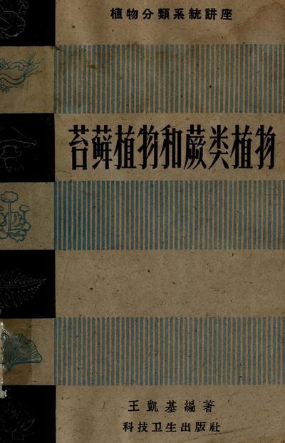 Tai xian zhi wu he jue lei zhi wu