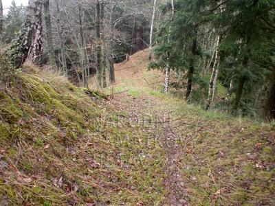 Ostrov u Bezdružic, okres Plzeň - sever, hradiště, šíje ostrožny.