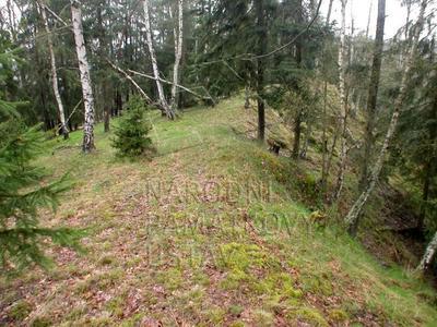 Ostrov u Bezdružic, okres Plzeň - sever, hradiště, SV okraj plochy ostrožny.