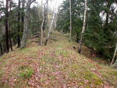 Ostrov u Bezdružic, okres Plzeň - sever, hradiště, šíje ostrožny na její SZ straně.