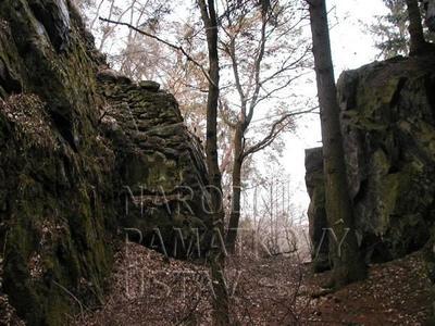 Plešnice, okres Plzeň - sever, zřícenina hradu Buben, šíjový příkop před předhradím.