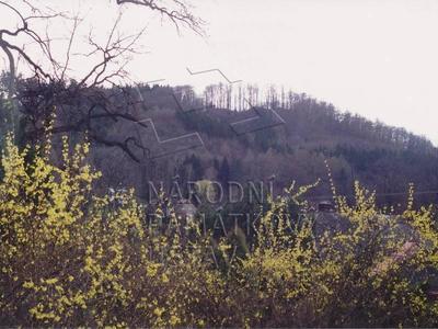 Potštejn, vrch Velešov - zřícenina hradu Velešov (mezi stromy lanovka).