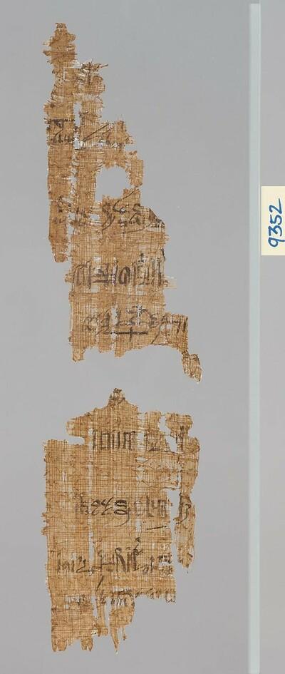 Zwei Fragmente eines hieratischen Papyrus