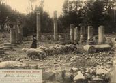 Pastorella con gregge di pecore al pascolo tra le rovine archeologiche di Saepinum romana, nel villaggio di Altilia