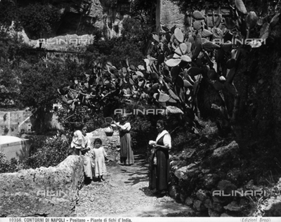 A group of women with children take a break under prickly pear plants, in Positano, a town near Salerno.