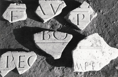 Panel fragments