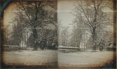 Stereoskop. 1855.