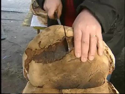 Gutes Brot im Trend