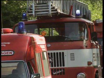 Waldbrand-Gefahr in Brandenburg