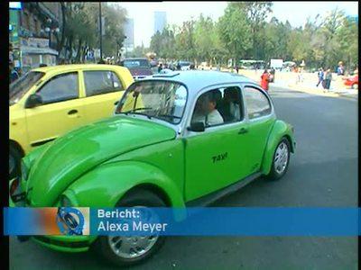New Beetle aus Mexico
