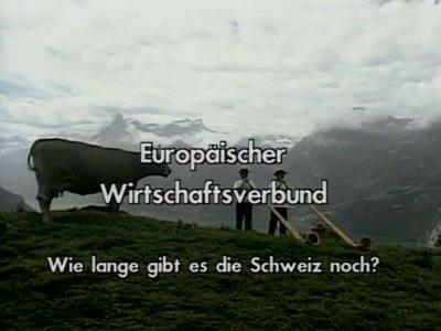 Europäischer Wirtschaftsverbund - Wie lange gibt es die Schweiz noch?