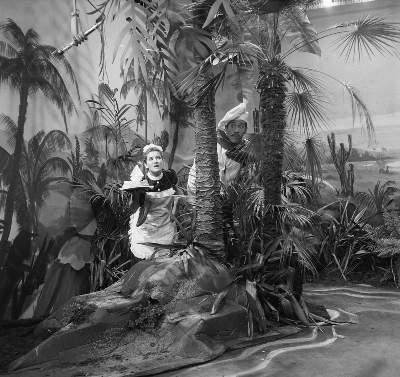 aflevering: Het eiland van Koereweit