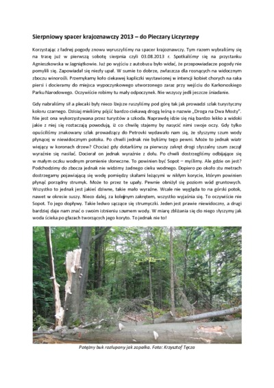 Lipcowy spacer krajoznawczy 2013 [Dokument elektroniczny]
