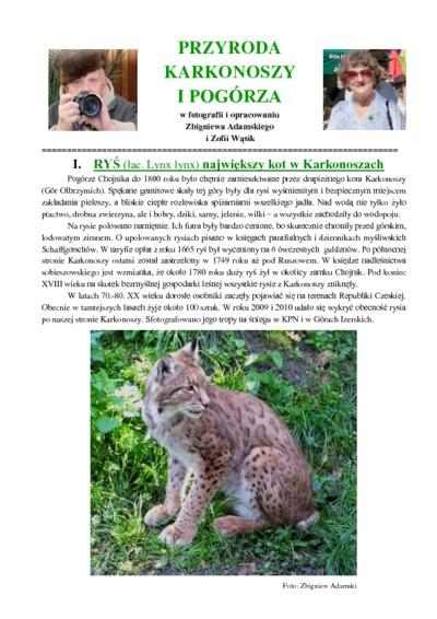 Ryś największy kot w Karkonoszach [Dokument elektroniczny]