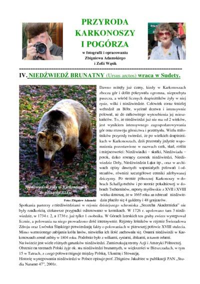 Niedźwiedź brunatny wraca w Sudety [Dokument elektroniczny]