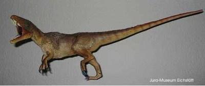 Modell von Juravenator starki