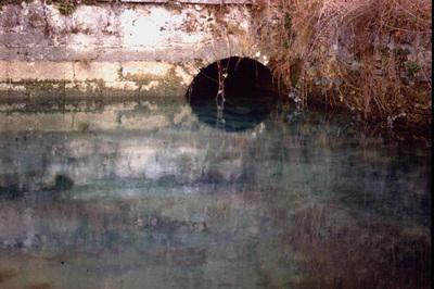 Bild 25 zu: Trinkwasser in Gefahr - Die Karstlandschaft der Frankenalb