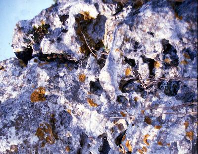 Bild 7  zu: Trinkwasser in Gefahr - Die Karstlandschaft der Frankenalb