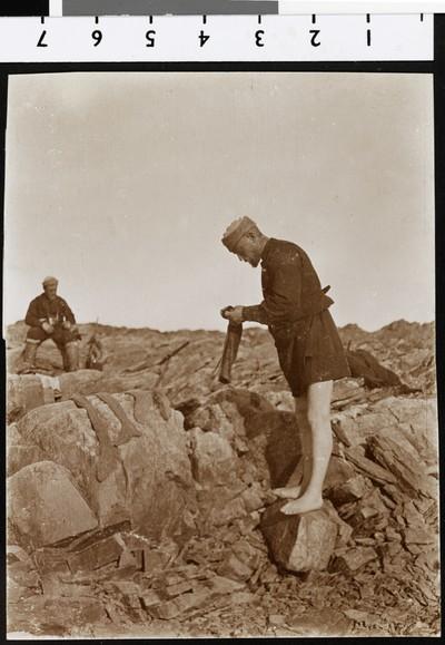 Optagelser fra Danmarkekspeditionen, 1906-1908