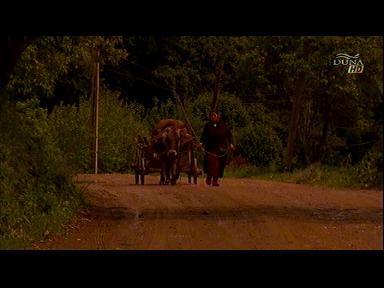 Moldovai csángómagyar keresztalja útja Klézsétől Csíksomlyóig