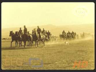 12. konjička divizija
