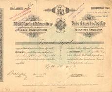 Az Újvidéki Takarékpénztár elsőbbségi részvénye 400 korona értékben