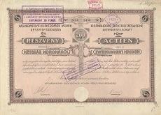 A Vasvármegyei Elektromos Művek Rt. összevont részvénye 1000 koronáról