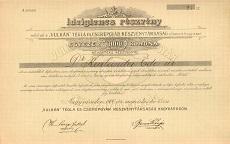 A Vulkán Tégla- és Cserépgyár Rt. ideiglenes részvénye 1000 koronáról