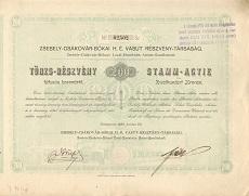 A Zsebely-Csákóvár-Bókai Helyi Érdekű Vasút Rt. törzsrészvénye 200 koronáról