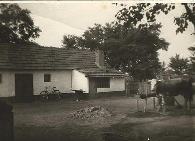 Martfű, Mariháza tanya