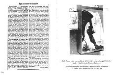 Egy szomorú évforduló - újságcikk