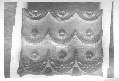 Fotó, kaposvári mintafák
