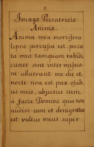 Imago Peccatricis Anmiae